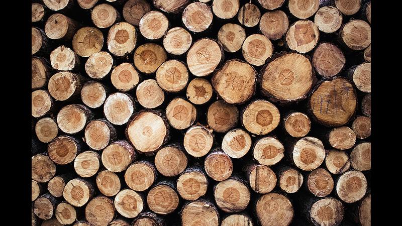 Firewood & log load sales_2.png